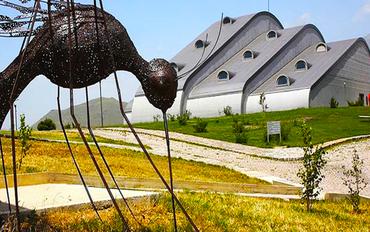 Baksı Müzesi - Çoruh Vadisi - Narman Peri Bacaları