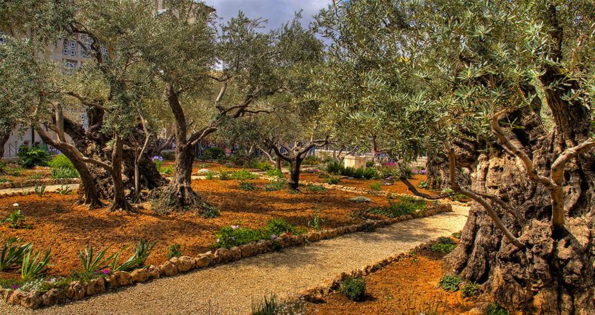 Tel Aviv – Kudüs Turu
