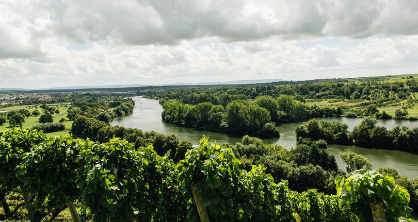 Main Nehri & Main-Tuna Kanalı & Tuna Nehri