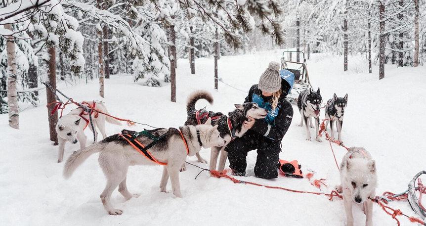Lapland ''Kuzey Işıkları''