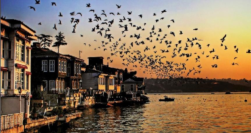 7 Gezi 7 İstanbul : Beykoz'da Bir Gün